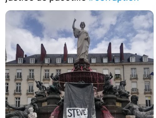 "Nantes ""Steve' fountain via @isidornazereth on Twitter"