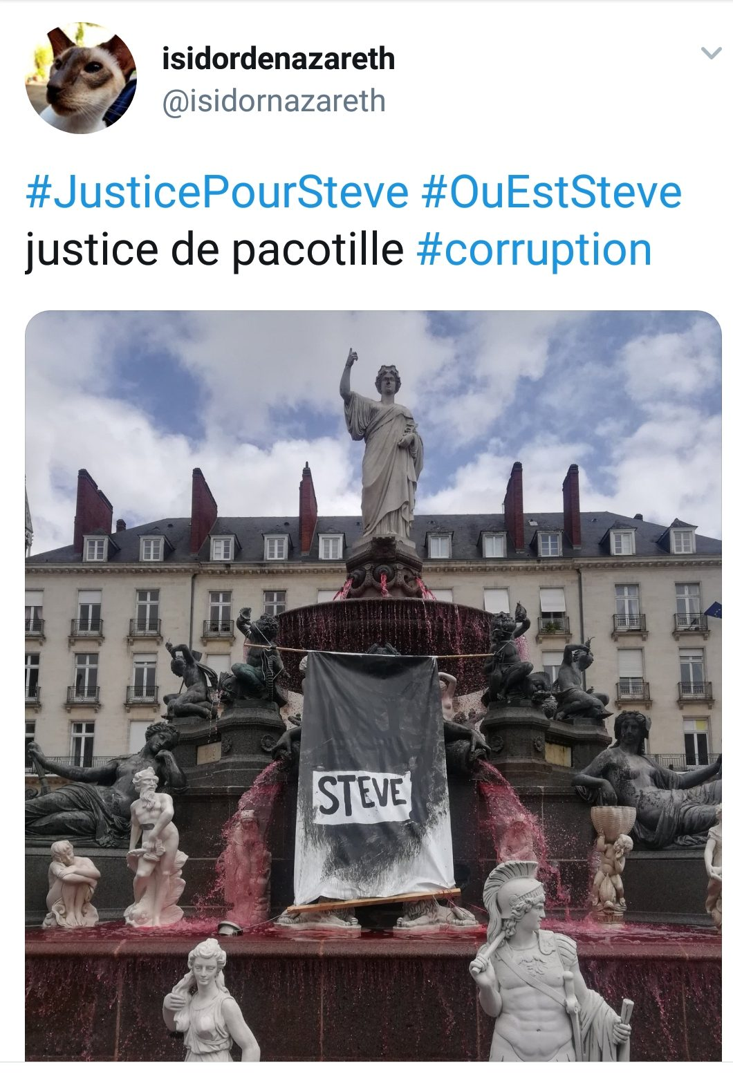 "Nantes ""Steve' fountain via @isidornazereth on Twitter"